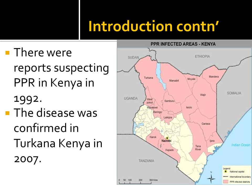 Introduction contn'  There were reports suspecting PPR in Kenya in 1992.