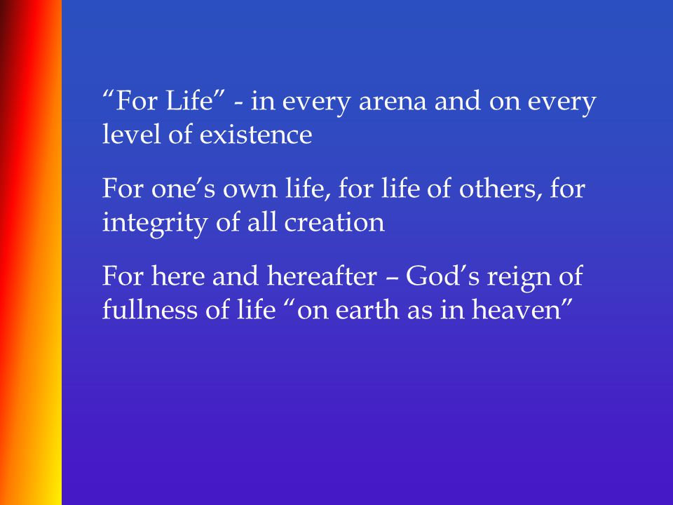 """""""For Life"""" - in every arena and on every level of existence For one's own life, for life of others, for integrity of all creation For here and hereaft"""