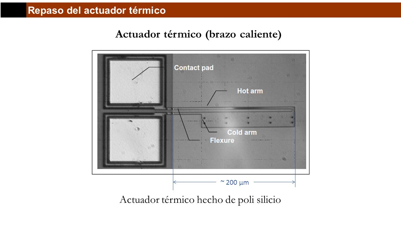 Repaso del actuador térmico Actuador térmico (brazo caliente) Actuador térmico hecho de poli silicio ~ 200 μm