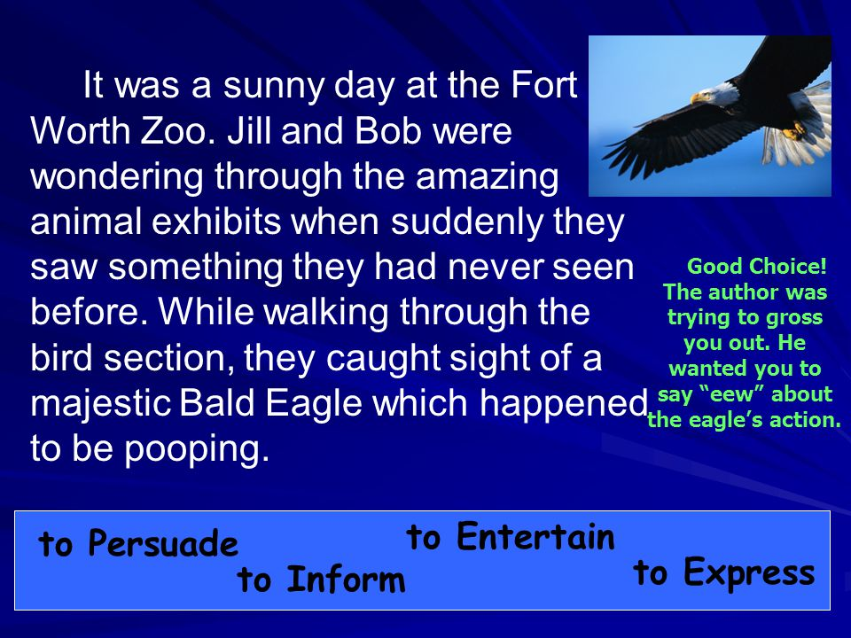 It was a sunny day at the Fort Worth Zoo.