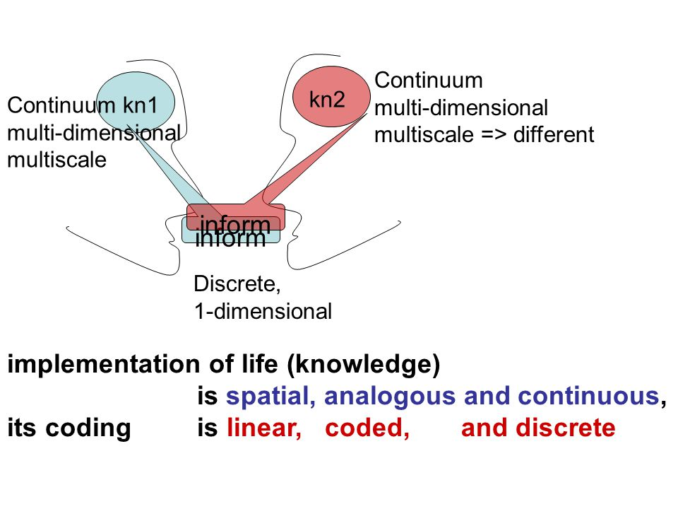 Continuum kn1 multi-dimensional multiscale inform kn2 inform Discrete, 1-dimensional Continuum multi-dimensional multiscale => different implementation of life (knowledge) is spatial, analogous and continuous, its coding is linear, coded, and discrete