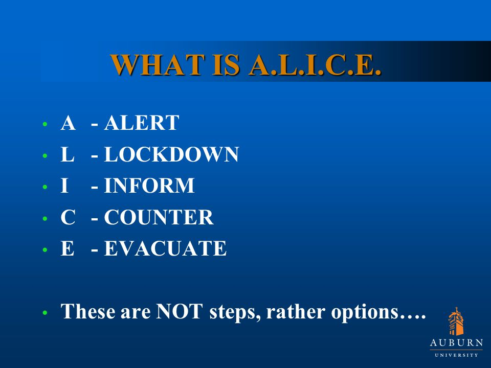 WHAT IS A.L.I.C.E.