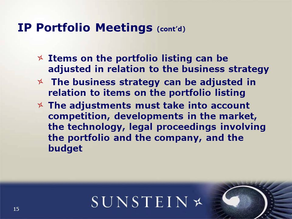 15 IP Portfolio Meetings (cont'd) Items on the portfolio listing can be adjusted in relation to the business strategy The business strategy can be adjusted in relation to items on the portfolio listing The adjustments must take into account competition, developments in the market, the technology, legal proceedings involving the portfolio and the company, and the budget