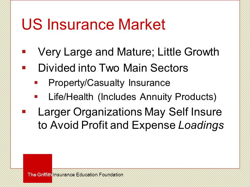 US Insurance Market  Very Large and Mature; Little Growth  Divided into Two Main Sectors  Property/Casualty Insurance  Life/Health (Includes Annui
