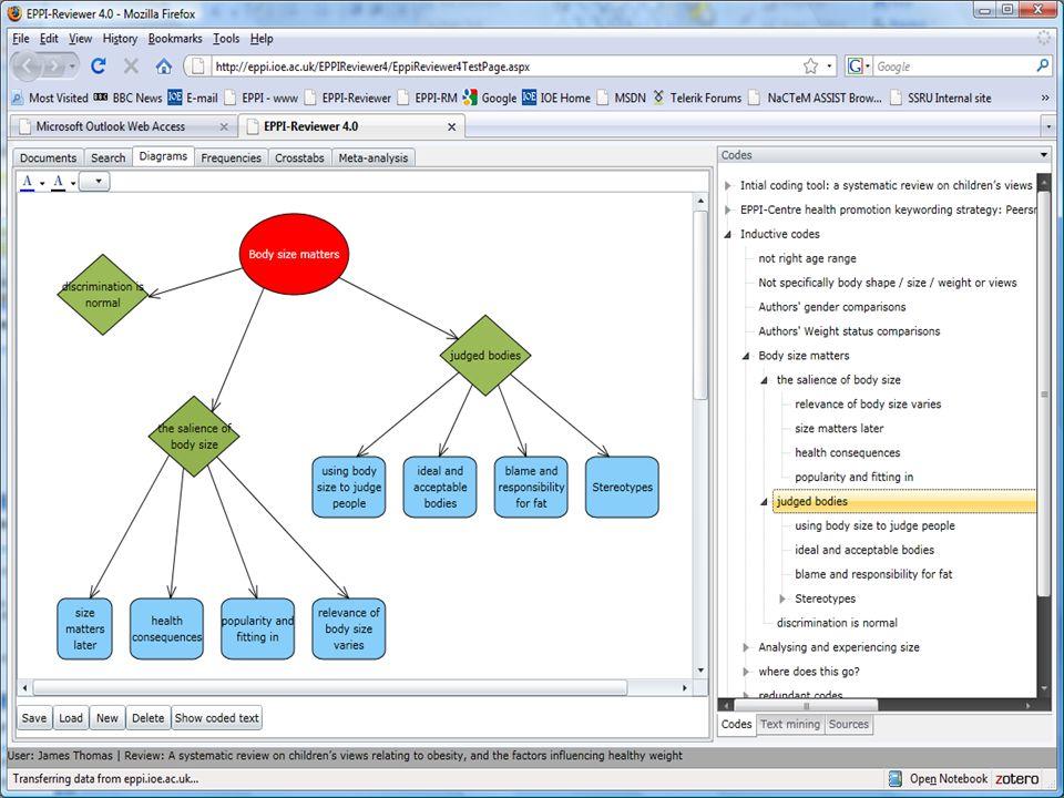 (33) Screenshot – descriptive codes diagram