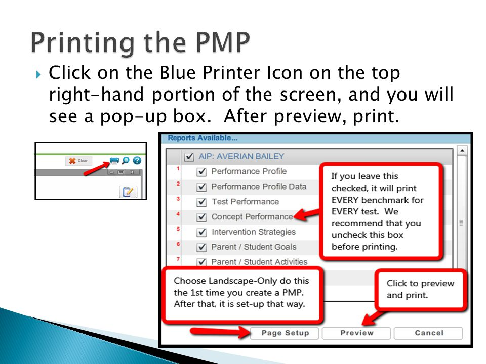  Click on the Blue Printer Icon on the top right-hand portion of the screen, and you will see a pop-up box.