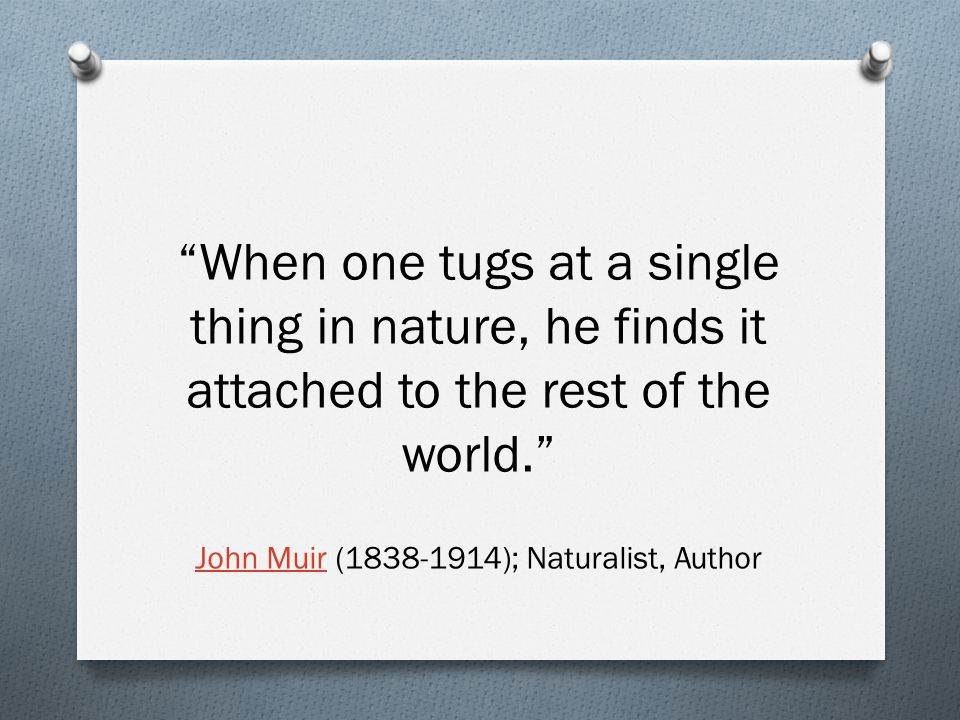 When one tugs at a single thing in nature, he finds it attached to the rest of the world. John MuirJohn Muir (1838-1914); Naturalist, Author
