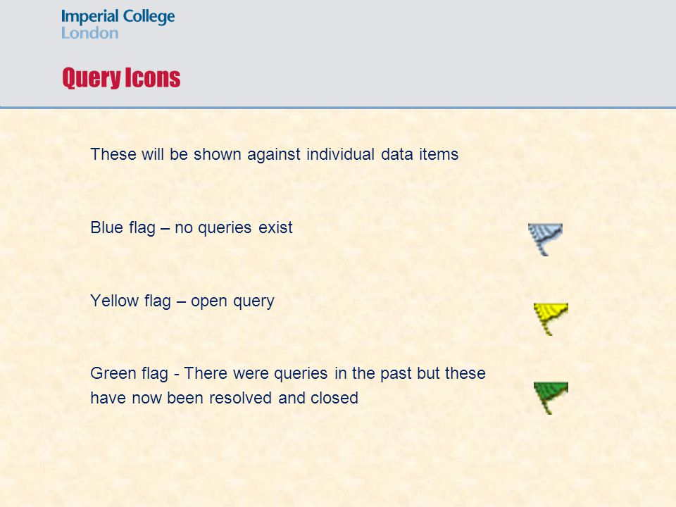Query Icons These will be shown against individual data items Blue flag – no queries exist Yellow flag – open query Green flag - There were queries in the past but these have now been resolved and closed