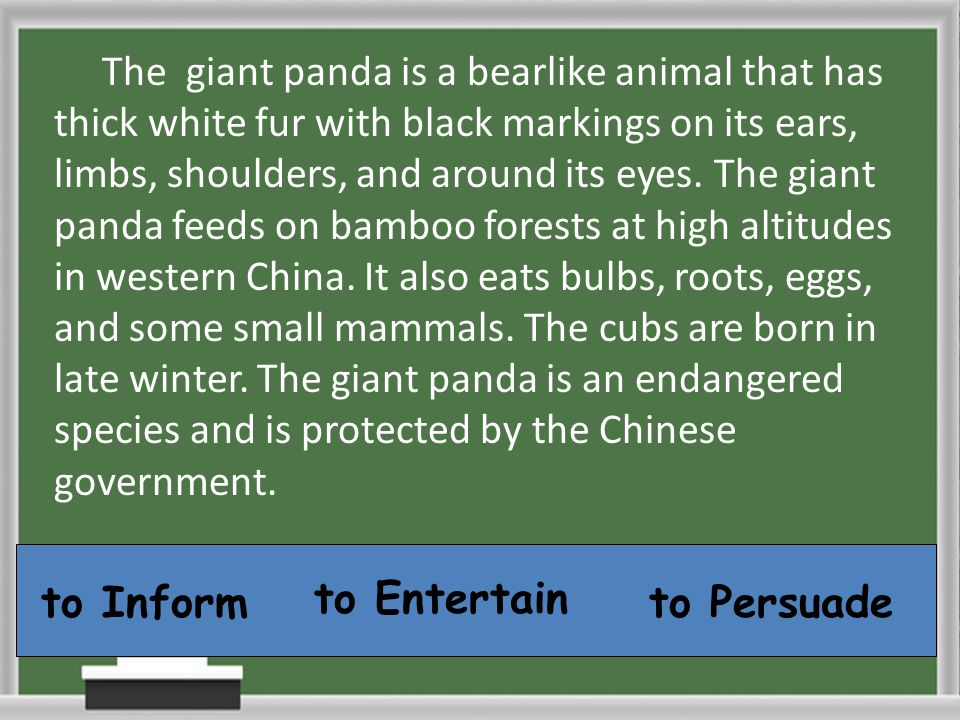 to Inform to Entertain to Persuade The giant panda is a bearlike animal that has thick white fur with black markings on its ears, limbs, shoulders, an