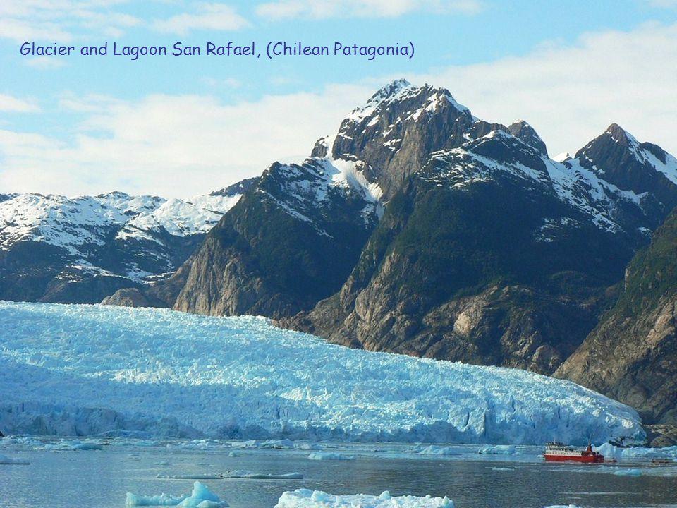 Chilean Plateau