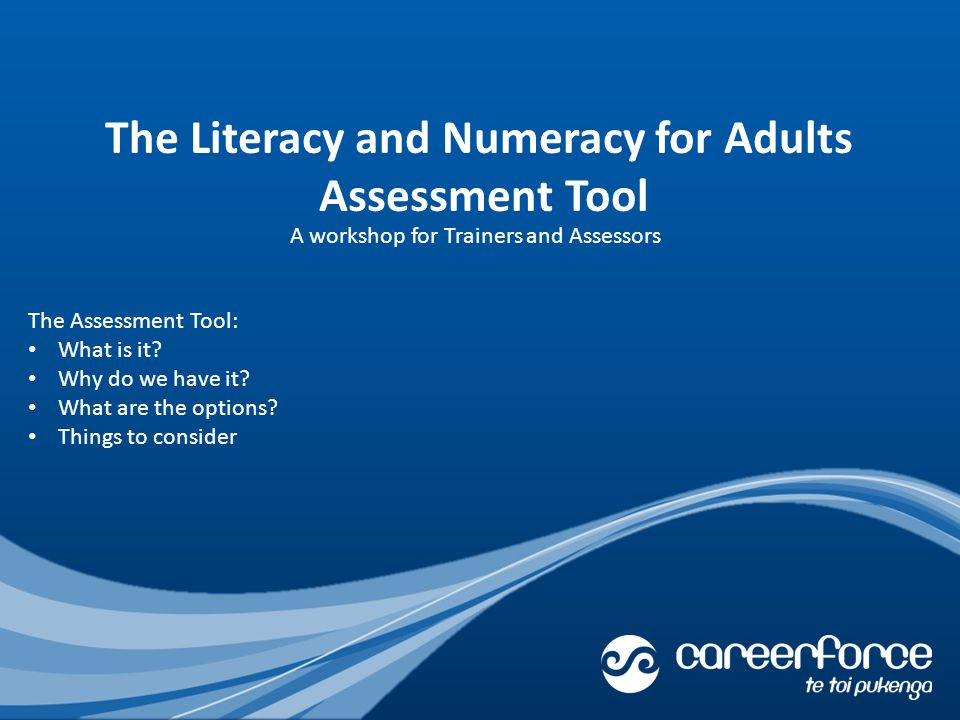 The Literacy and Numeracy for Adults Assessment Tool The Assessment Tool: What is it.