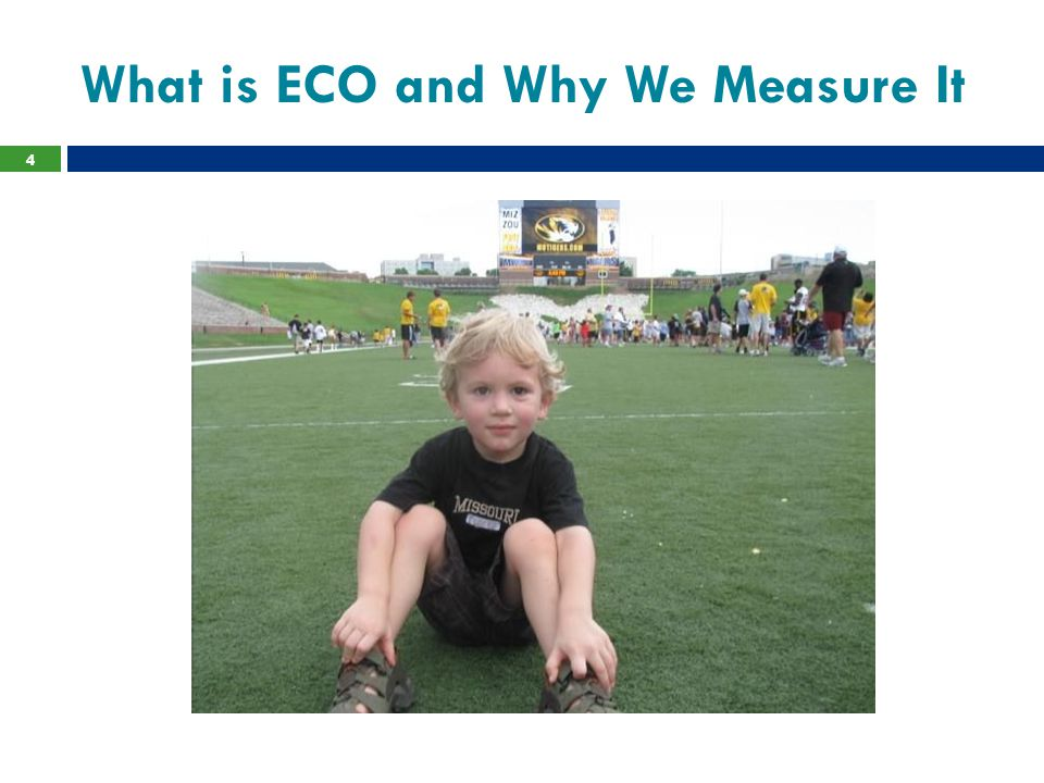 When is ECO collected.