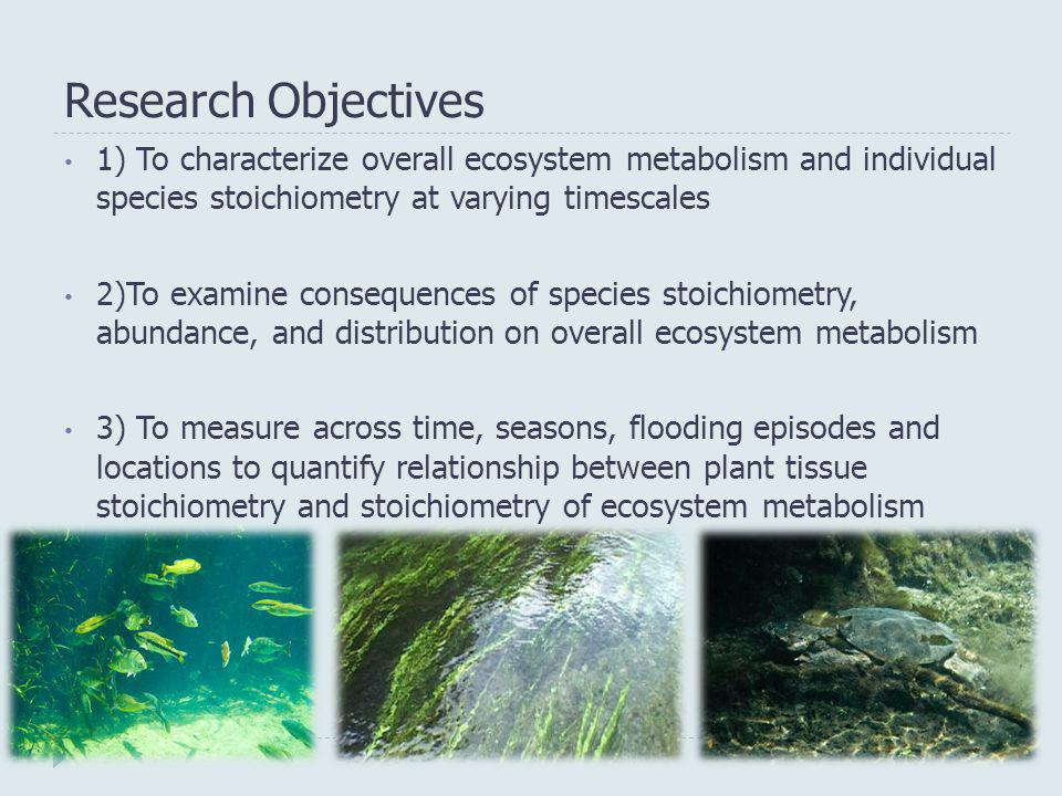 Research Objectives 1) To characterize overall ecosystem metabolism and individual species stoichiometry at varying timescales 2)To examine consequenc