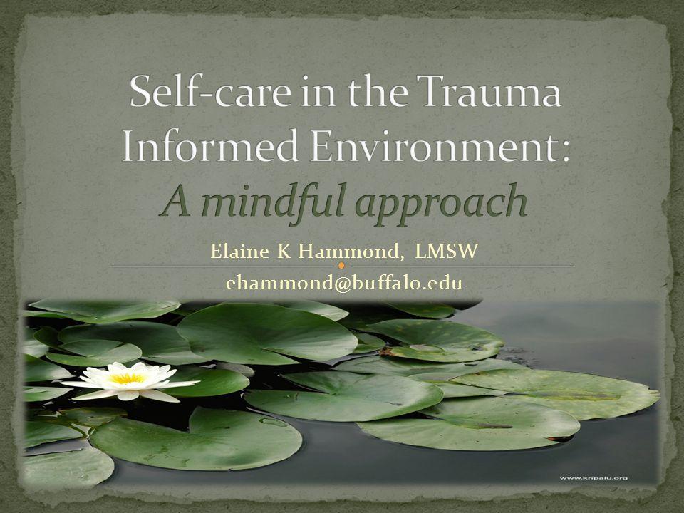 Elaine K Hammond, LMSW ehammond@buffalo.edu