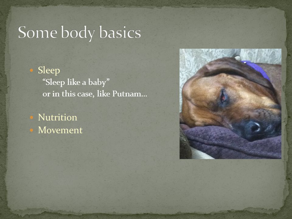 Sleep Sleep like a baby or in this case, like Putnam… Nutrition Movement