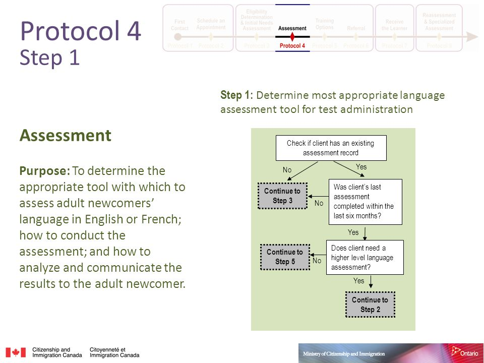 Assessment Purpose: To determine the appropriate tool with which to assess adult newcomers' language in English or French; how to conduct the assessment; and how to analyze and communicate the results to the adult newcomer.