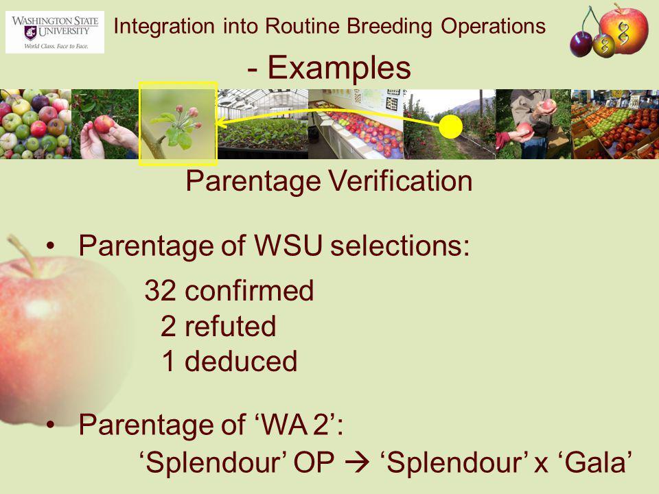 Integration into Routine Breeding Operations - Examples Parentage of WSU selections: Parentage of 'WA 2': Parentage Verification 32 confirmed 2 refuted 1 deduced 'Splendour' OP  'Splendour' x 'Gala'