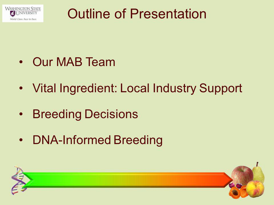 Outline of Presentation Our MAB Team Vital Ingredient: Local Industry Support Breeding Decisions DNA-Informed Breeding