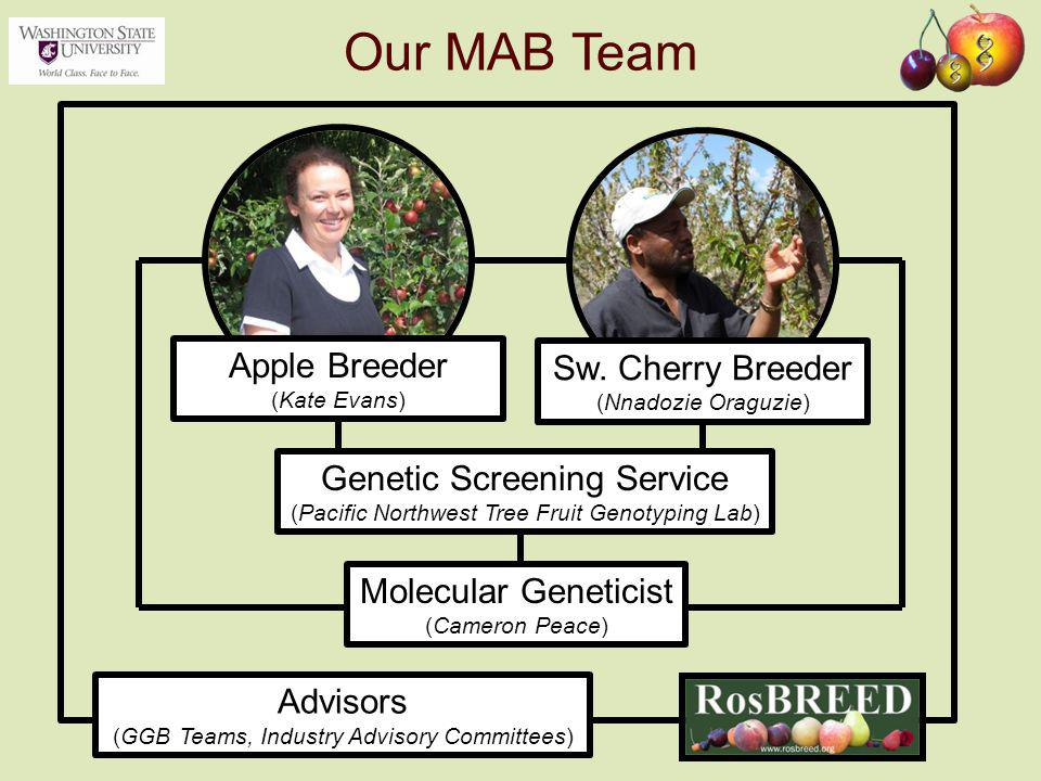 Molecular Geneticist (Cameron Peace) Apple Breeder (Kate Evans) Sw. Cherry Breeder (Nnadozie Oraguzie) Advisors (GGB Teams, Industry Advisory Committe