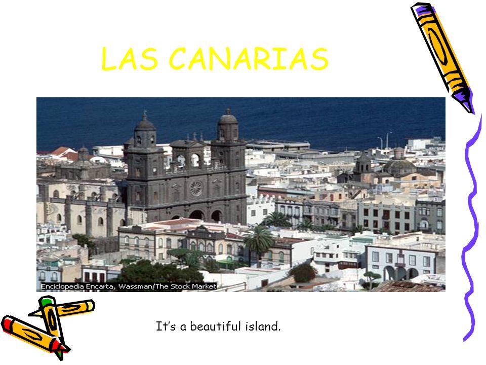 LAS CANARIAS It's a beautiful island.