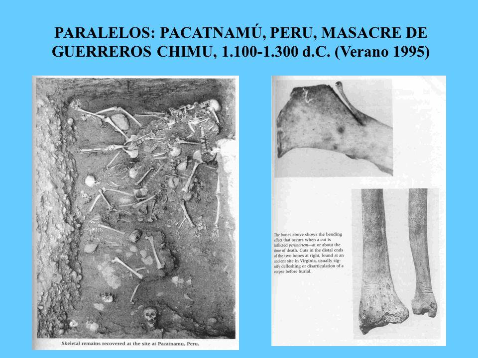 PARALELOS: PACATNAMÚ, PERU, MASACRE DE GUERREROS CHIMU, 1.100-1.300 d.C. (Verano 1995)