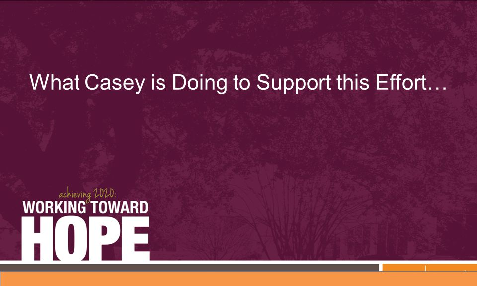 What Casey is Doing to Support this Effort…