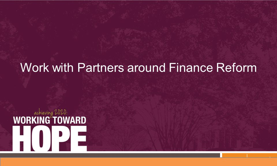 Work with Partners around Finance Reform