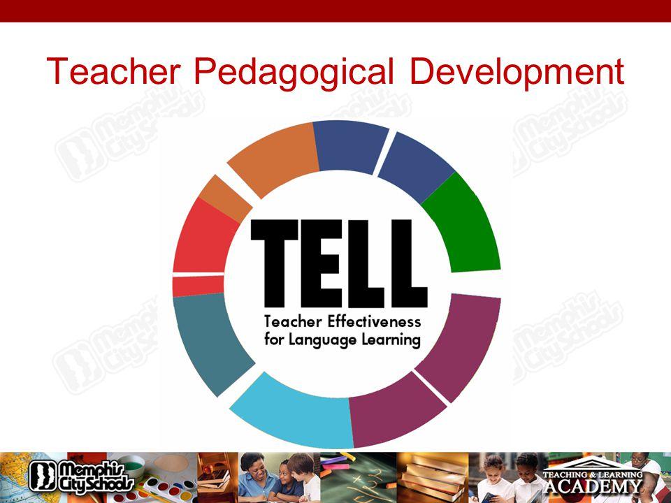 Teacher Pedagogical Development