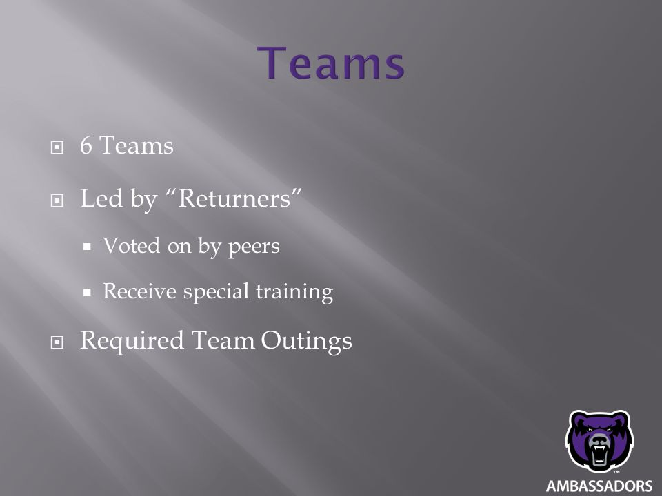 """ 6 Teams  Led by """"Returners""""  Voted on by peers  Receive special training  Required Team Outings"""