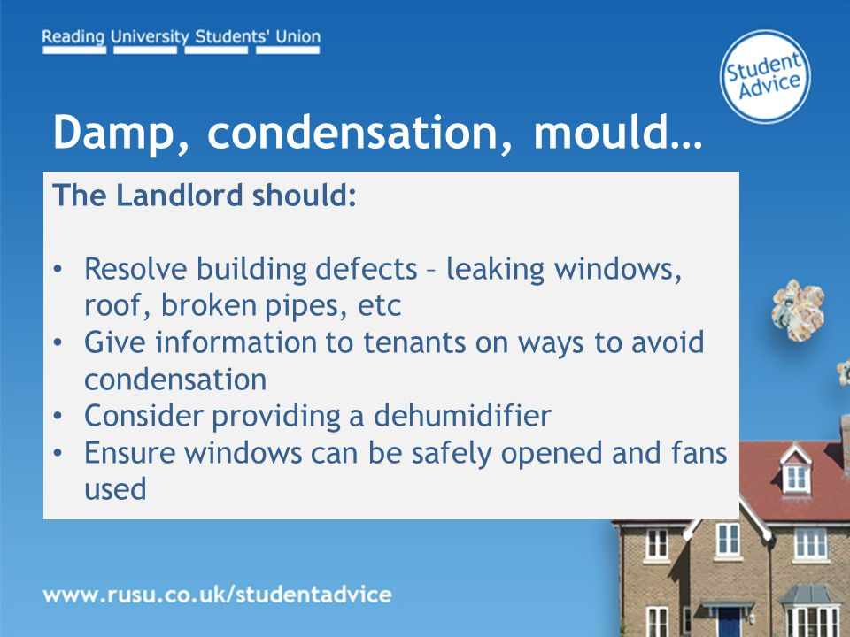 The Landlord should: Resolve building defects – leaking windows, roof, broken pipes, etc Give information to tenants on ways to avoid condensation Consider providing a dehumidifier Ensure windows can be safely opened and fans used Damp, condensation, mould…
