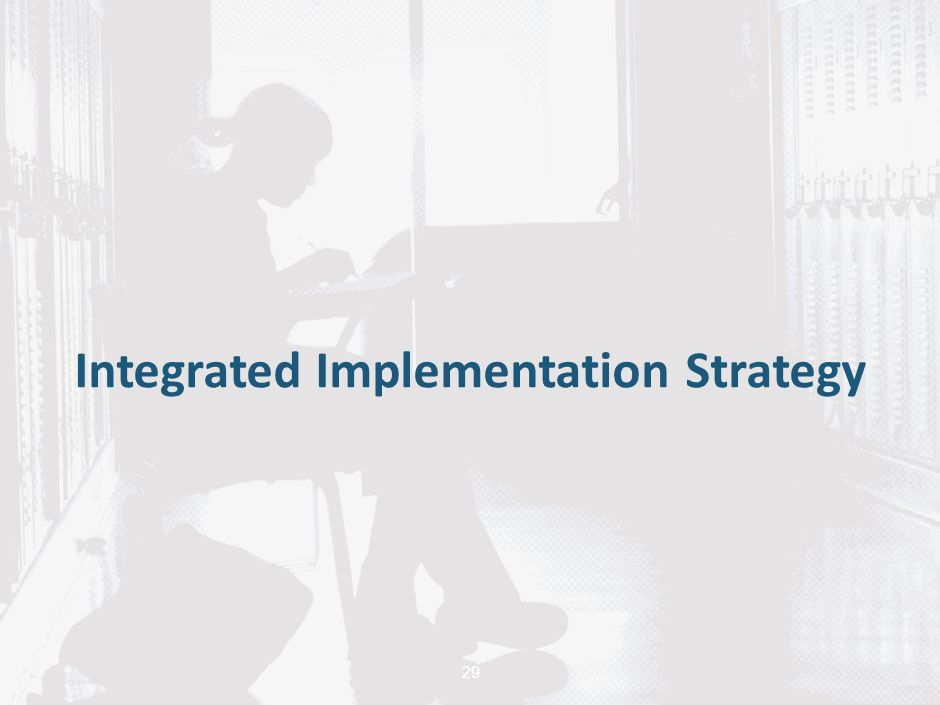 29 Integrated Implementation Strategy