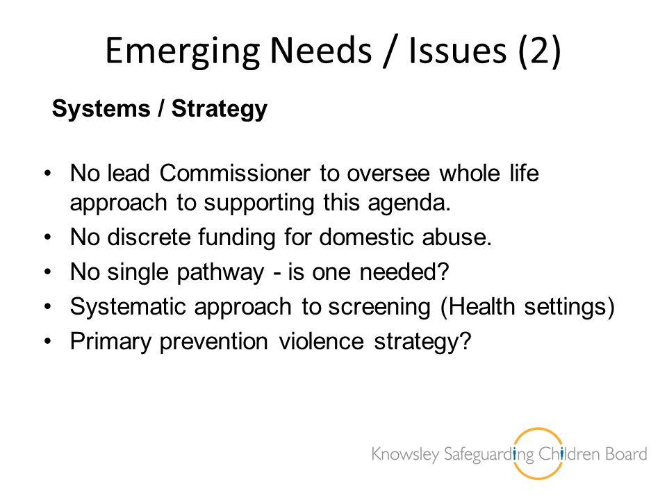 Emerging Needs / Issues (2) Systems / Strategy No lead Commissioner to oversee whole life approach to supporting this agenda. No discrete funding for