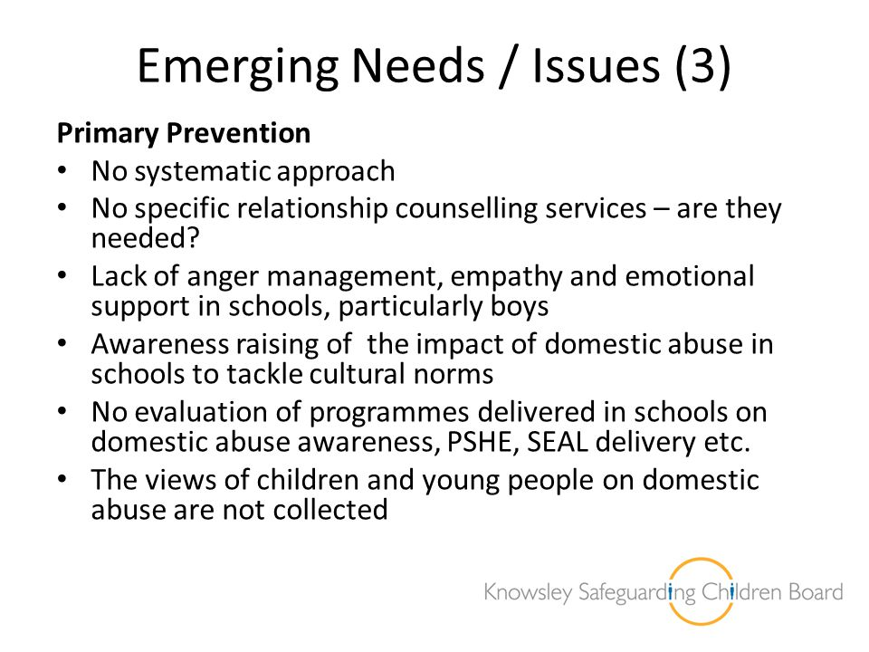 Emerging Needs / Issues (3) Primary Prevention No systematic approach No specific relationship counselling services – are they needed? Lack of anger m