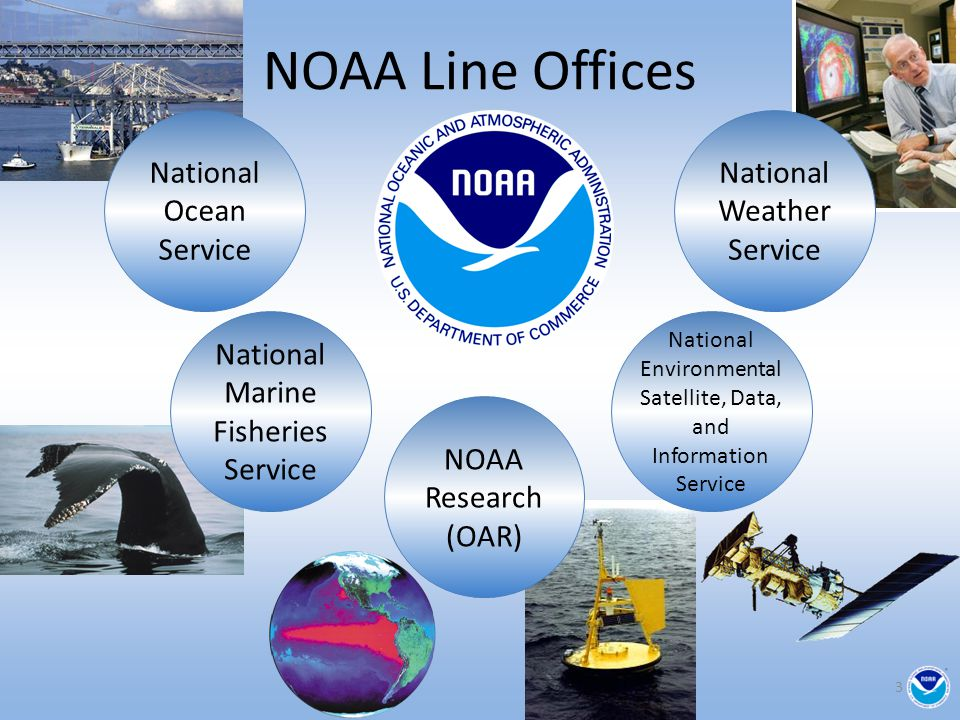 NOAA Climate Lab/Centers National Ocean Service National Environmental Satellite, Data, and Information Service National Marine Fisheries Service National Weather Service NOAA Research (OAR) NCEP Climate Prg Office GFDL ESRL PMELAOML NCDC NODC 4