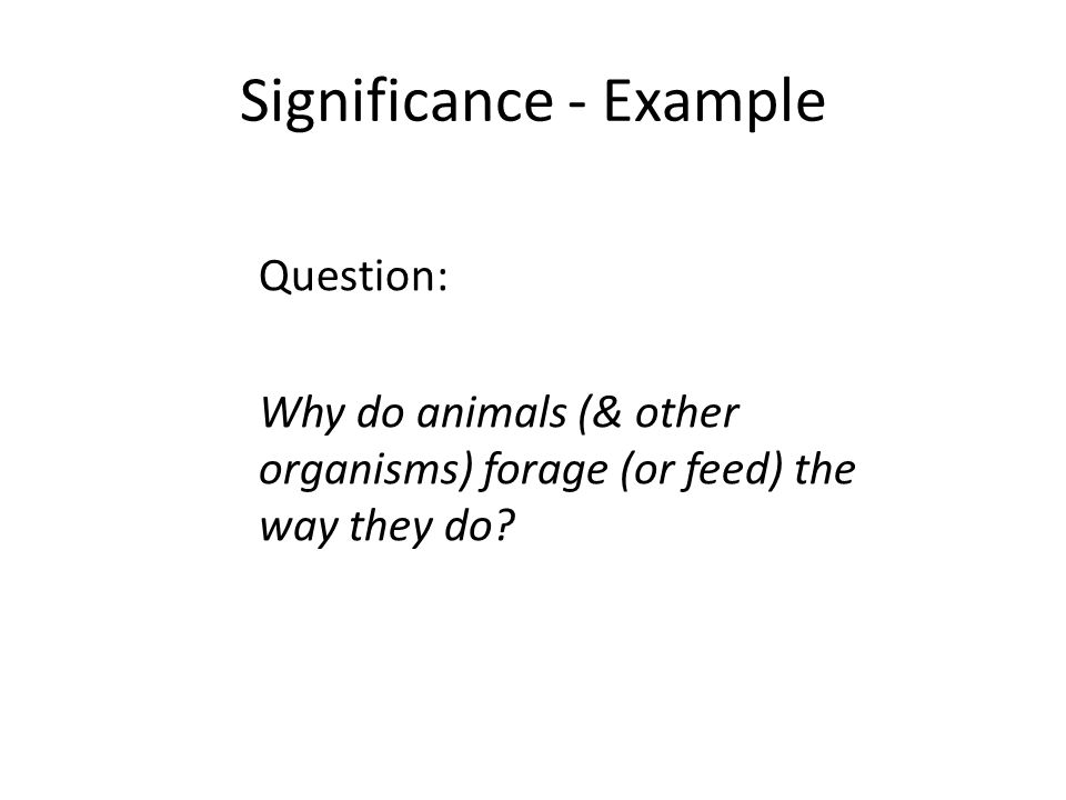 Significance - Example Question: Why do animals (& other organisms) forage (or feed) the way they do?