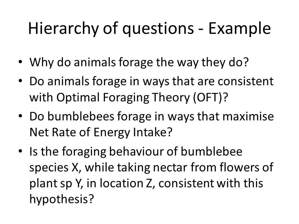 Hierarchy of questions - Example Why do animals forage the way they do? Do animals forage in ways that are consistent with Optimal Foraging Theory (OF