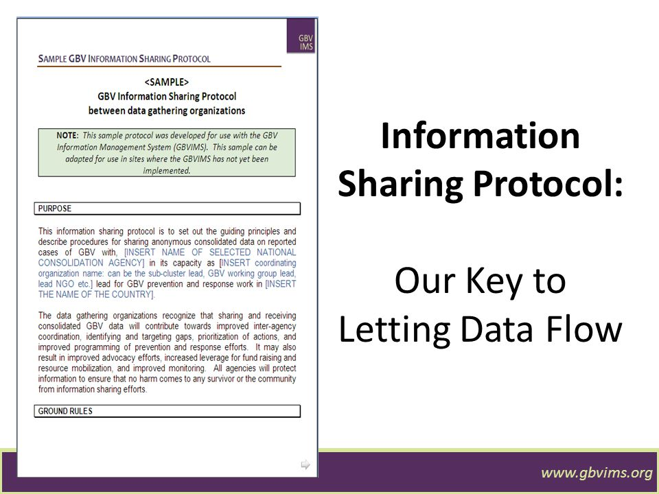 Information Sharing Protocol: Our Key to Letting Data Flow www.gbvims.org