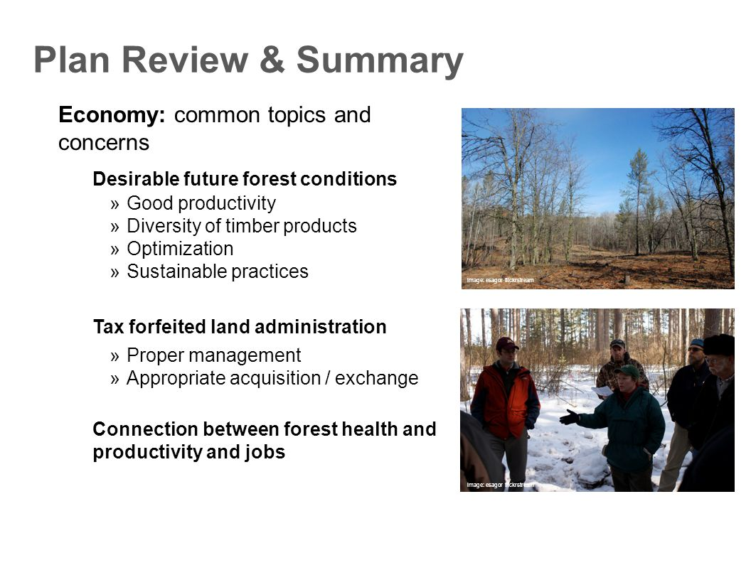Economy: common topics and concerns Plan Review & Summary  Good productivity  Diversity of timber products  Optimization  Sustainable practices Desirable future forest conditions  Proper management  Appropriate acquisition / exchange Tax forfeited land administration Connection between forest health and productivity and jobs image: esagor flickrstream