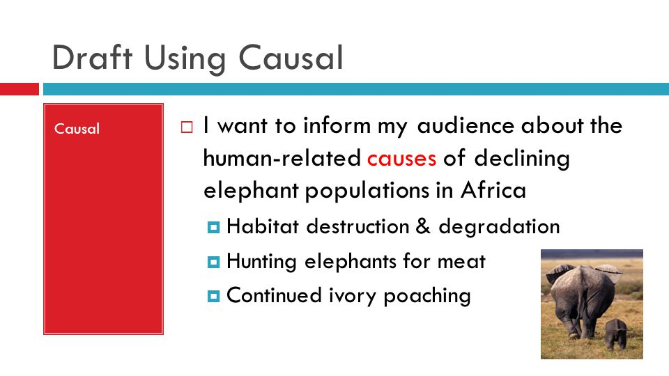 Draft Using Causal Causal  I want to inform my audience about the human-related causes of declining elephant populations in Africa  Habitat destruction & degradation  Hunting elephants for meat  Continued ivory poaching