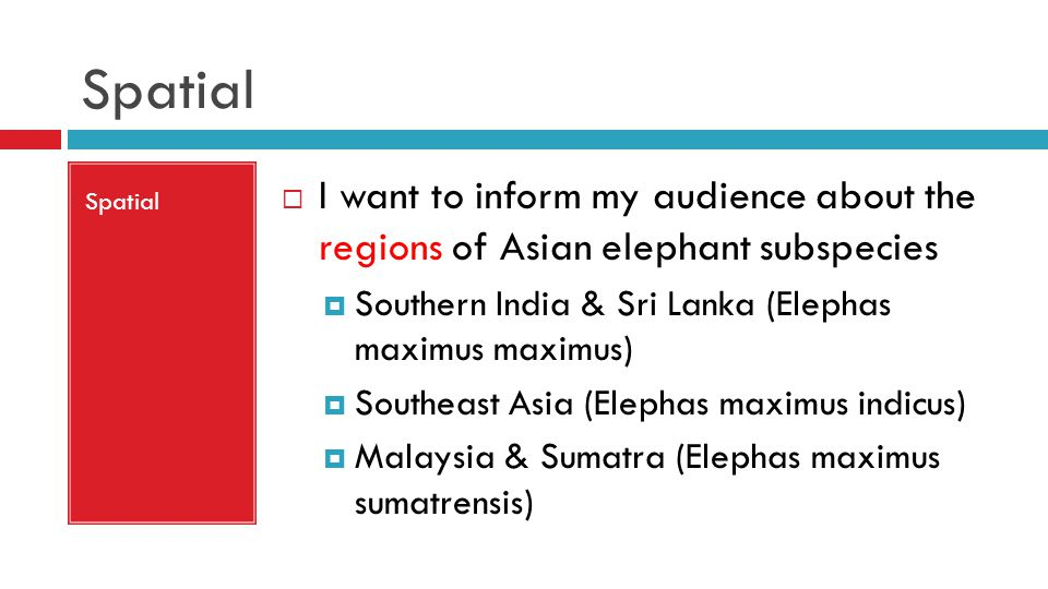 Spatial  I want to inform my audience about the regions of Asian elephant subspecies  Southern India & Sri Lanka (Elephas maximus maximus)  Southeast Asia (Elephas maximus indicus)  Malaysia & Sumatra (Elephas maximus sumatrensis)