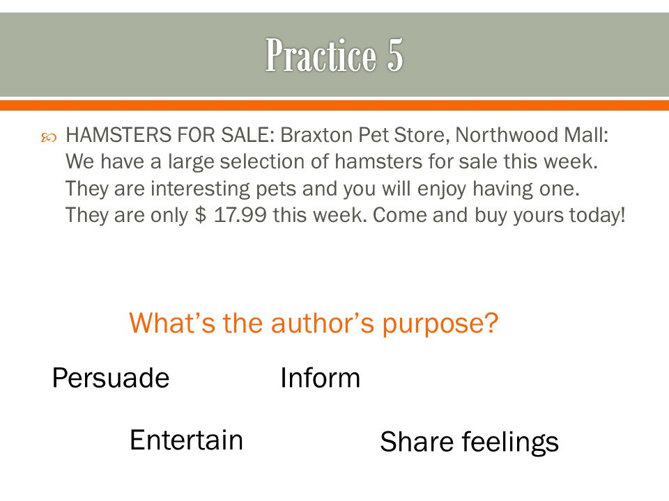  HAMSTERS FOR SALE: Braxton Pet Store, Northwood Mall: We have a large selection of hamsters for sale this week.
