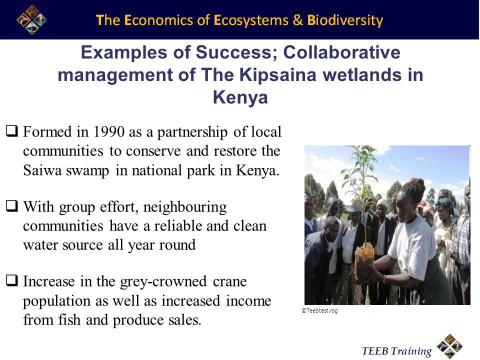 TEEB Training Examples of Success; Collaborative management of The Kipsaina wetlands in Kenya  Formed in 1990 as a partnership of local communities to conserve and restore the Saiwa swamp in national park in Kenya.