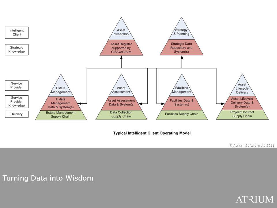 Turning Data into Wisdom © Atrium Software Ltd 2011
