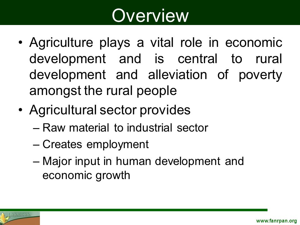 www.fanrpan.org Continued The sector has been declining in recent years The Underlying causes –Adverse weather –Biological –Socio-economic –Institution and cultural constraints –Low usage of agricultural inputs –Deficiencies in farmers' management practices