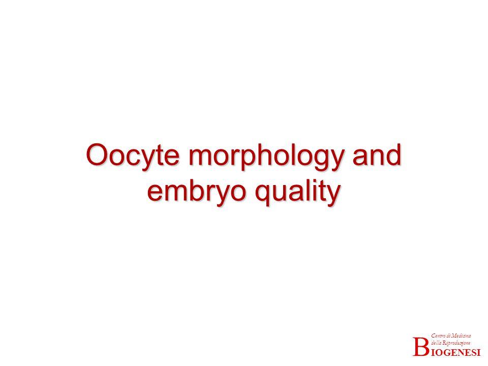 IOGENESI Centro di Medicina della Riproduzione B Oocyte morphology and embryo quality