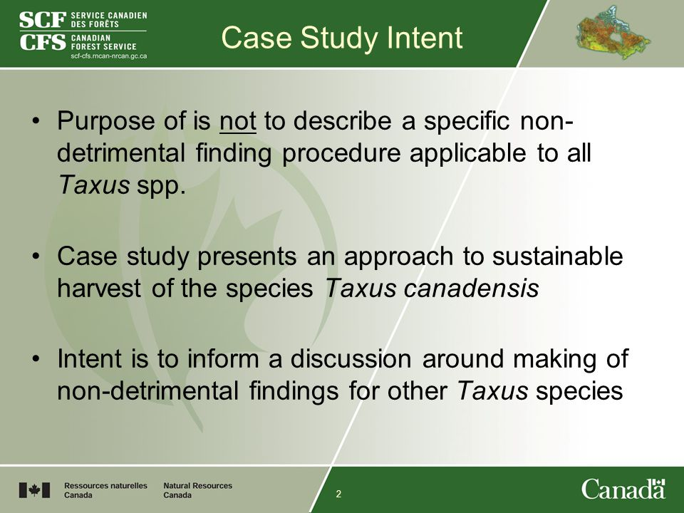 2 Case Study Intent Purpose of is not to describe a specific non- detrimental finding procedure applicable to all Taxus spp.