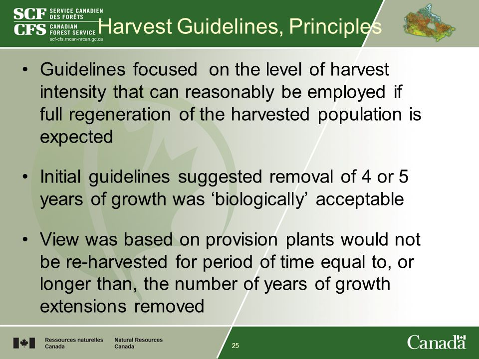 25 Harvest Guidelines, Principles Guidelines focused on the level of harvest intensity that can reasonably be employed if full regeneration of the harvested population is expected Initial guidelines suggested removal of 4 or 5 years of growth was 'biologically' acceptable View was based on provision plants would not be re-harvested for period of time equal to, or longer than, the number of years of growth extensions removed