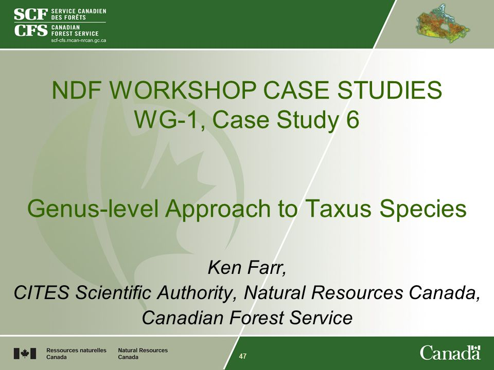 47 NDF WORKSHOP CASE STUDIES WG-1, Case Study 6 Genus-level Approach to Taxus Species Ken Farr, CITES Scientific Authority, Natural Resources Canada, Canadian Forest Service