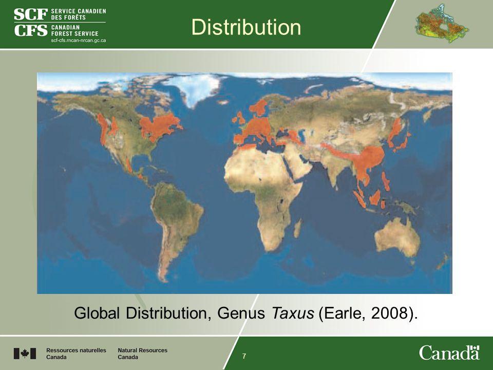 7 Distribution Global Distribution, Genus Taxus (Earle, 2008).
