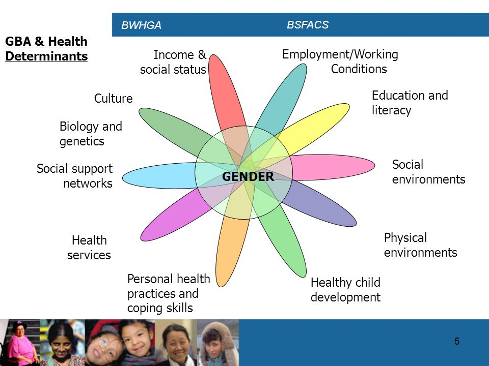 BWHGA BSFACS 16 Progress to Date…  Canada has made a number of investments in health information  A great number of indicators are available to help inform policy and program decisions on a wide variety of health issues and to report on the health of Canadians  However, there are persistent gaps in health information that need to be addressed  Health Canada is funding two external research projects on gender-sensitive health indicators